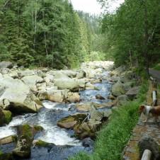 Řeka Vydra a Vchynickotetovský kanál