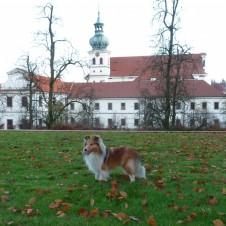 Angie na podzimní procházce u Břevnovského kláštera