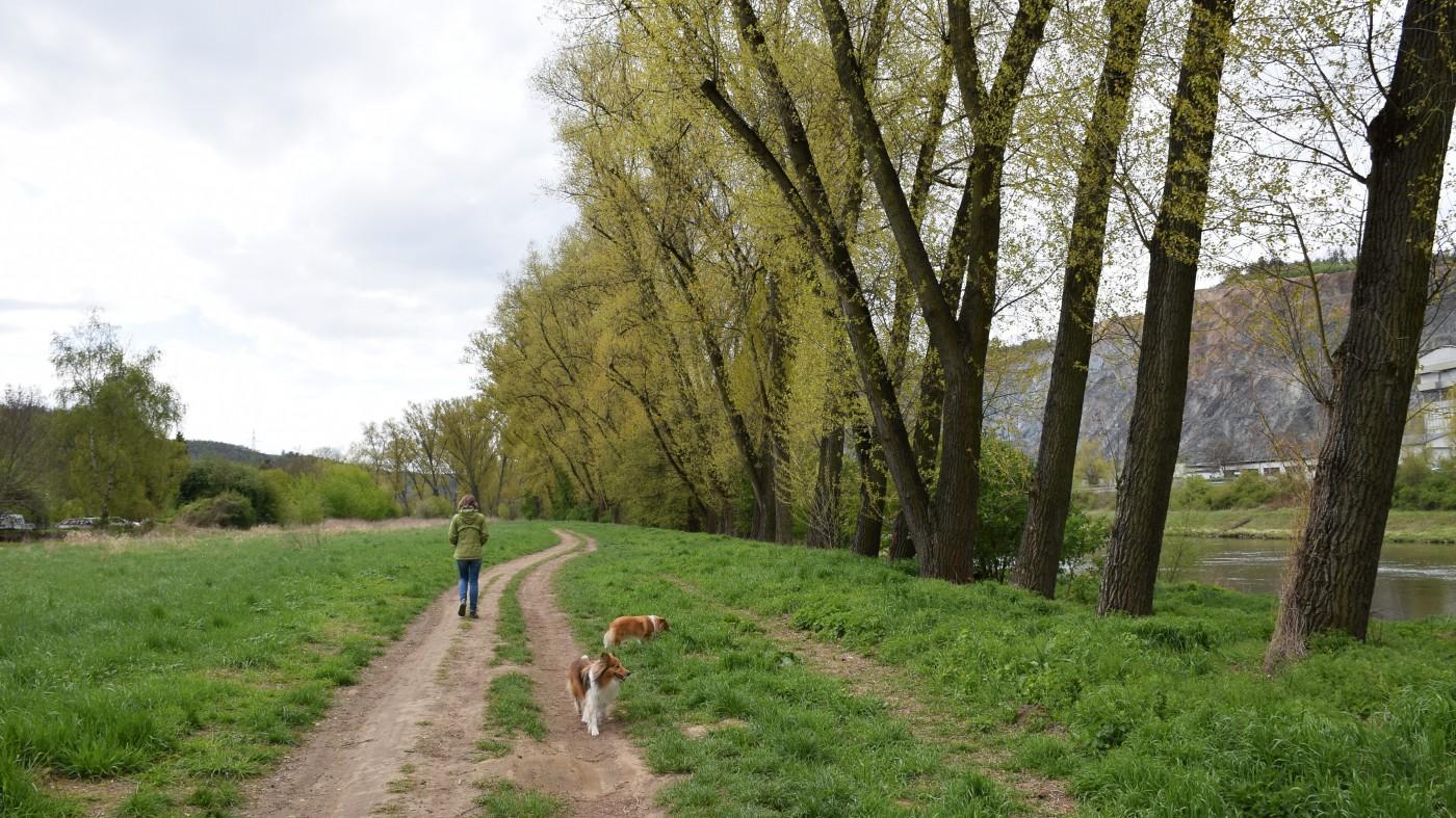 Nejstarší keltské hradiště v ČR Oppidum Závist