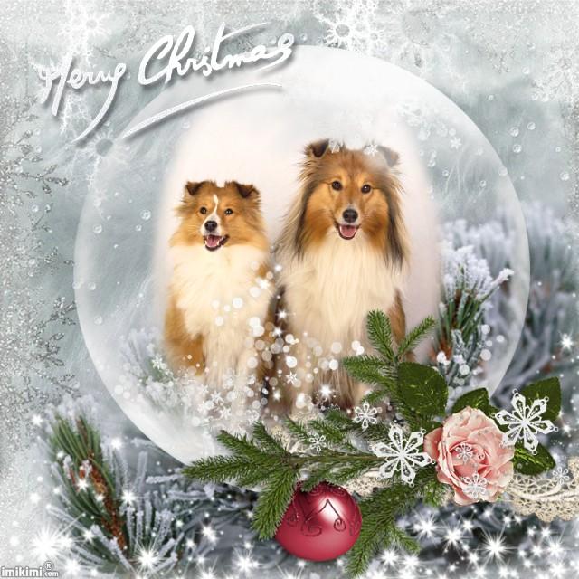 Vánoční přání a PF 2018